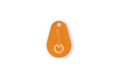 Tag porte-clés RFID KFX 125 KHz EM IZYX