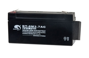 Batterie 6 Volts 3.7Ah RISCO