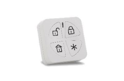 Télécommande Panda 4 boutons bi-directionne...